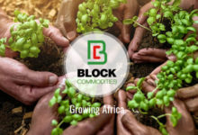 blockcommoditie-BlockchainLand