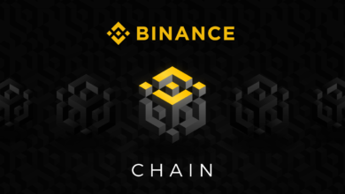 Binance-Chain-Attracting-Crypto-Tokens-Project-BlockchainLand