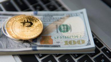 bitcoin-crypto-institutional-investment-blockchainLand